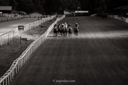 Carrera de Caballos en Hipódromo Municipal de Donostia